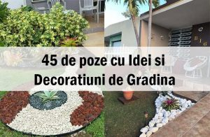 45 de poze cu Idei si Decoratiuni de Gradina