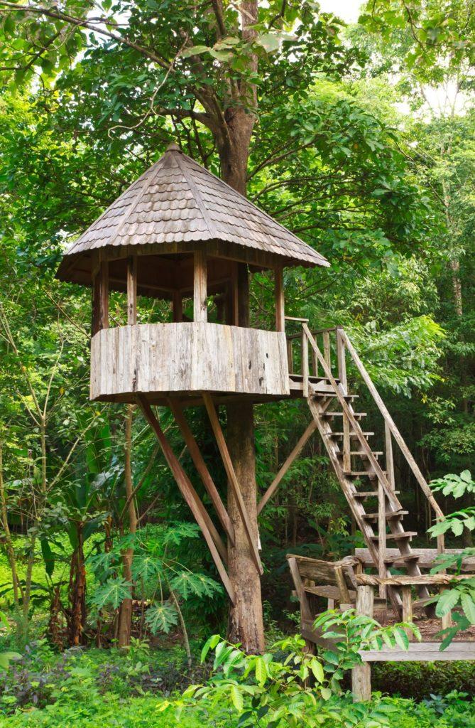 construieste-o-casa-in-copac-pentru-copilu-tau-24-idei-magice-11