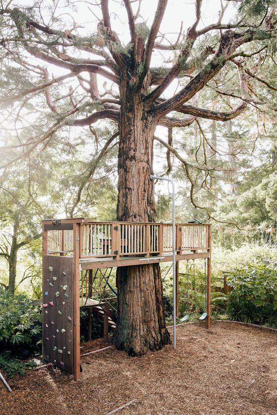 construieste-o-casa-in-copac-pentru-copilu-tau-24-idei-magice-5001